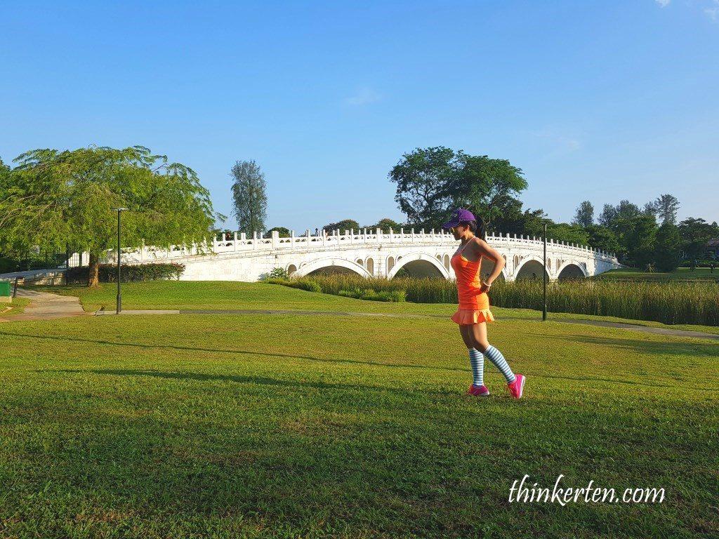 Bridge link to Japanese Garden