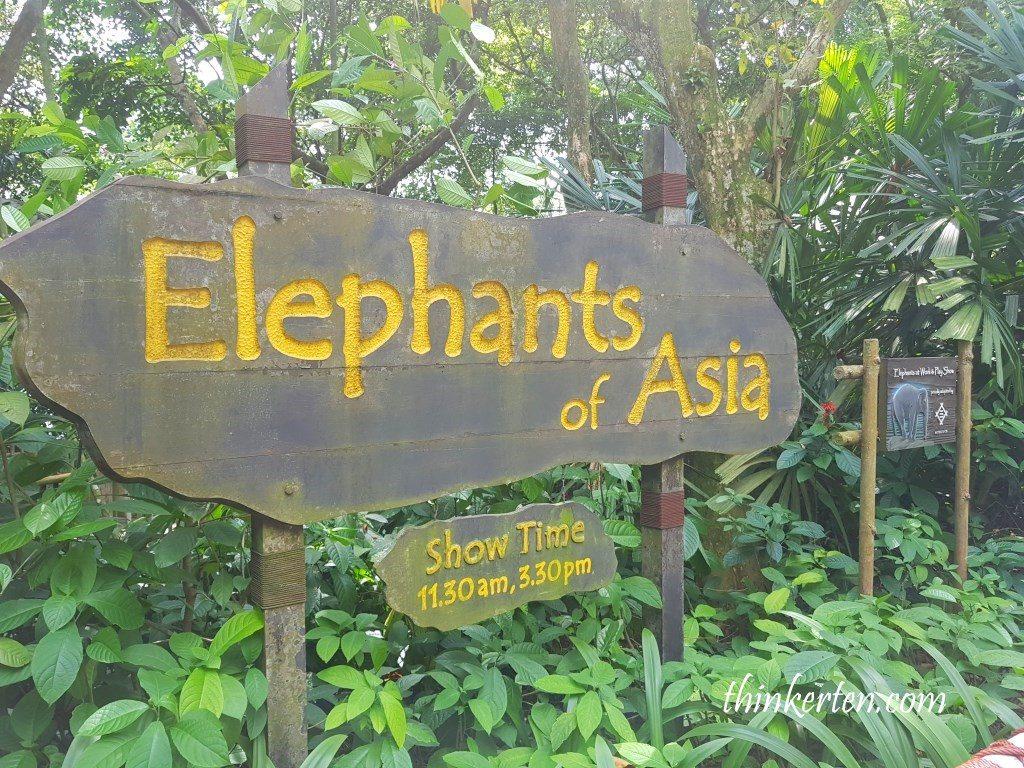 Elephant shows - Singapore Zoo