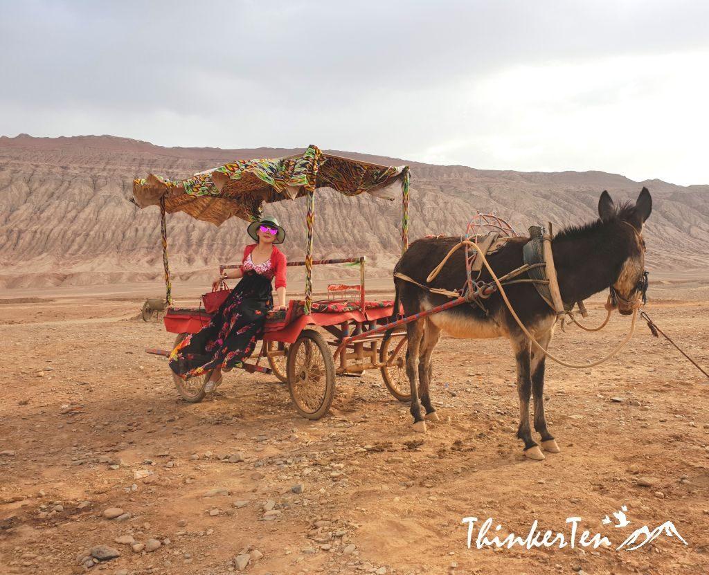 China : Ancient Silk Road - GANSU & NORTHERN XINJIANG Travel Itinerary
