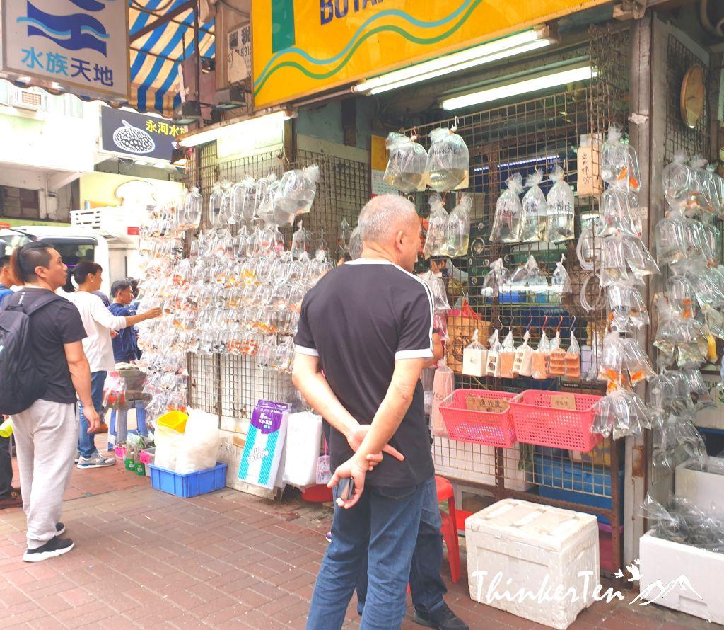 10 Things to do in Mongkok 旺角, the crowded corner of Hong Kong!