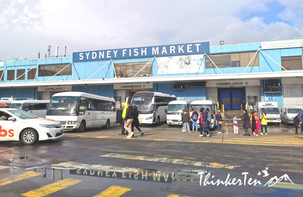 Sydney Fish Market -Overpriced but Is it worth for a visit?