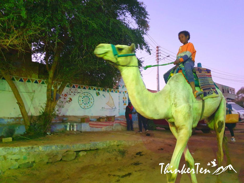 Nubian Village Aswan Egypt - What you need to know