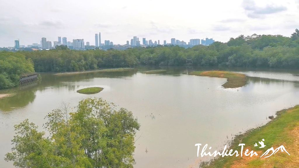 What you need to know about Sungei Buloh Wetland Reserve Singapore
